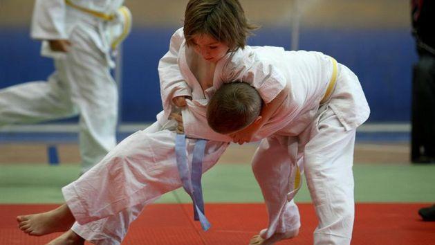 judo-djeca-de001129ec5a17f31cdc980d68997924_view_article