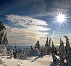 Zimsko-sunce-download-besplatne-pozadine-za-desktop-slike-priroda-zima-led-snijeg